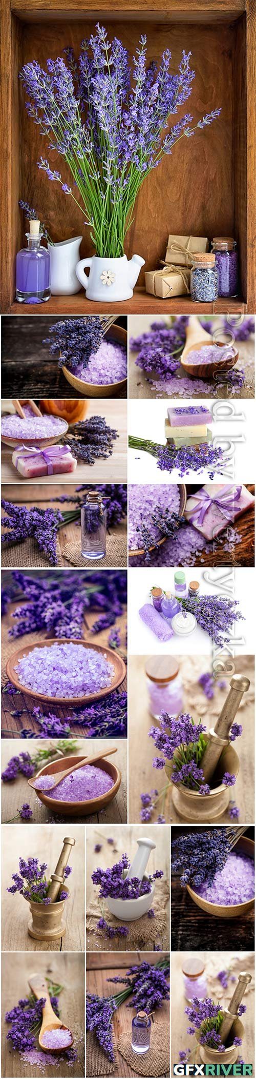 Lavender, spa concept beautiful stock photo