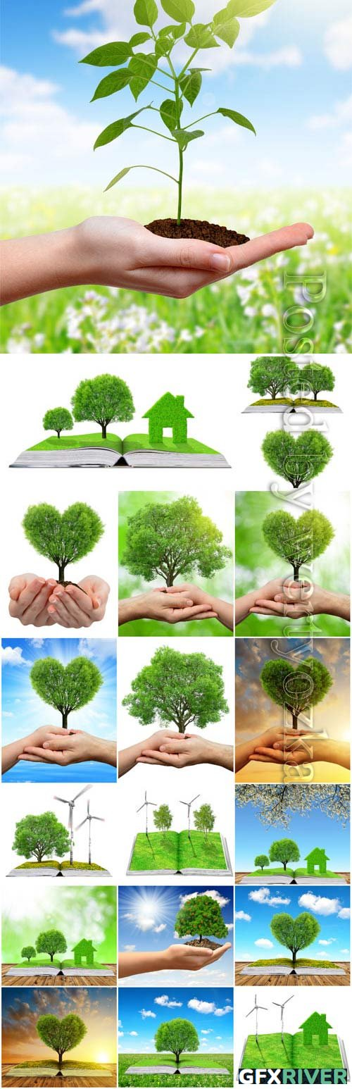 Green trees in hands, concept of nature and man stock photo